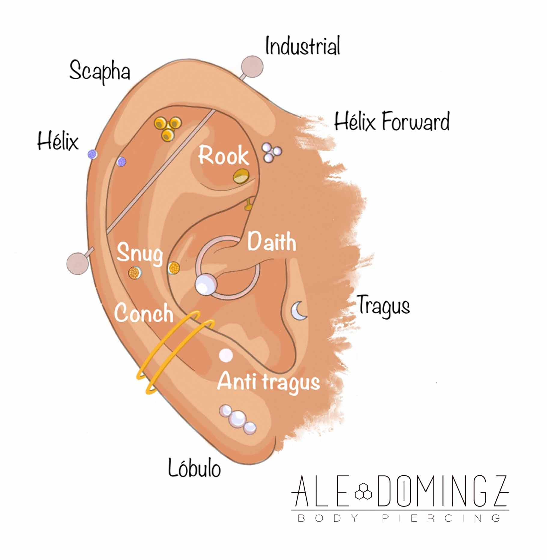 zonas-piercings-oreja